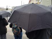В Воронежской области этим летом регулярно льют дожди.