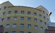 Воронежский областной суд.