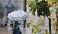 На выходных пройдут дожди.