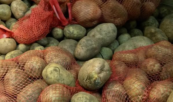 Овощи не пустили в нашу область.