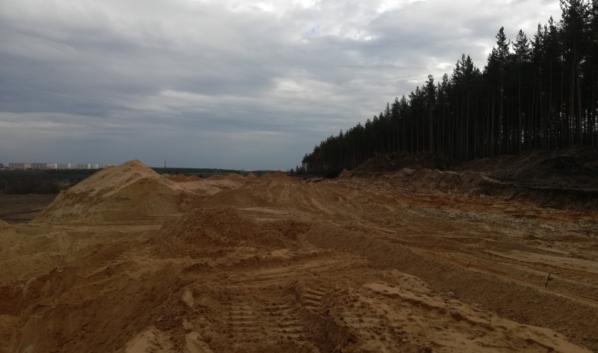 Лес не будут больше вырубать.
