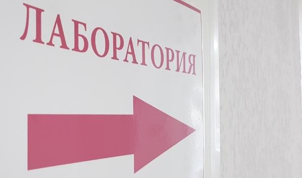 Коронавирус у супругов из Воронежа не нашли.