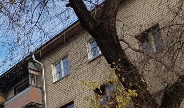 Щенок упал с высоты 5 этажа.