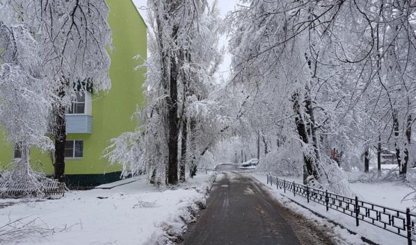 Мокрый снег будет налипать на деревьях и проводах.