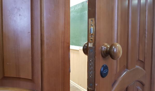 Школы Воронежа готовы перейти на дистанционное обучение.