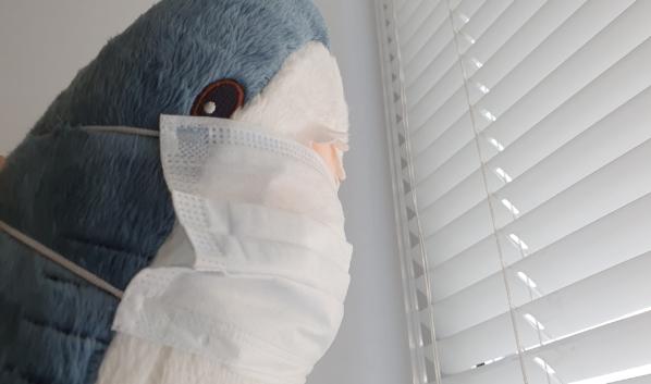 Горожанка хотела купить медицинские маски.