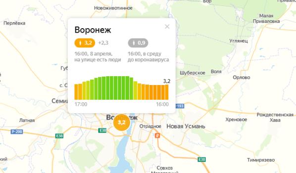 Воронежцев призывают оставаться дома.