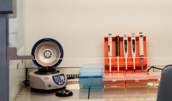 Статистика по заболевшим коронавирусом на вечер 17 мая.
