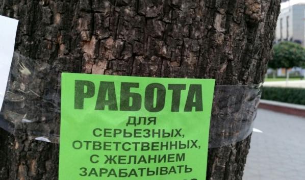 В Воронежской области разработают меры борьбы с безработицей.