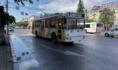 Троллейбусы вновь выехали на улицы Воронежа.