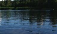 Подросток утонул в реке Дон.