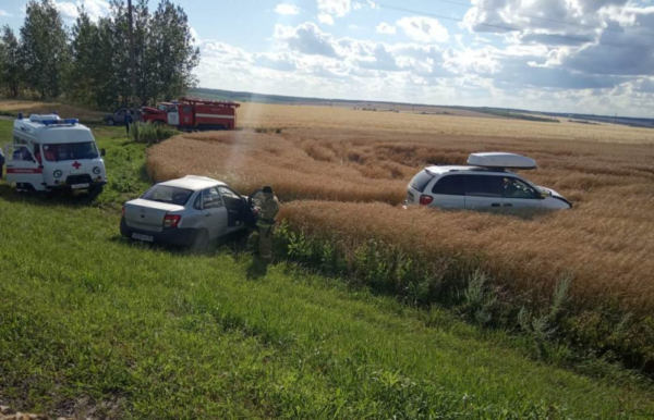 Авария случилась на 181 км автодороги «Курск-Саратов» в Нижнедевицком  районе.