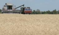 Воронежские аграрии собирают урожай.