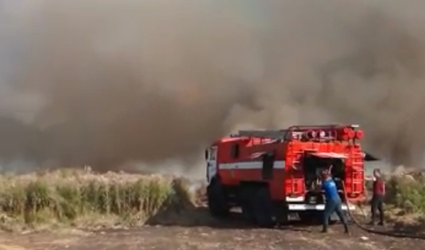 Поле загорелось неподалеку от домов.