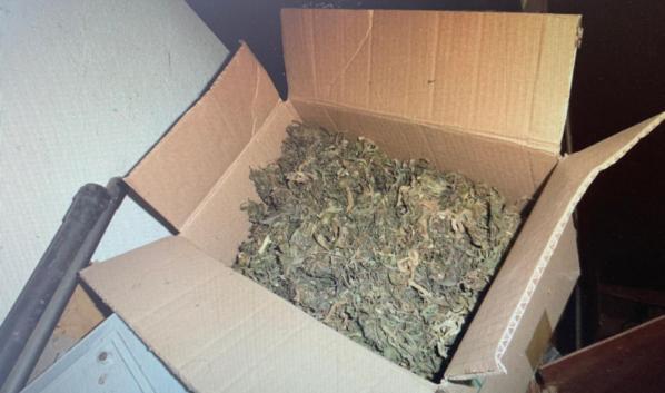 1 коробок марихуаны носки с марихуаной недорого