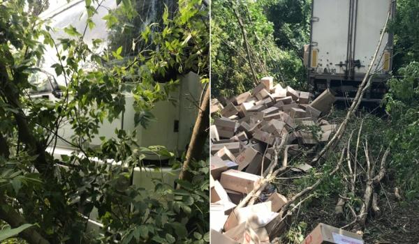 Авария случилась в Ольховатском районе.