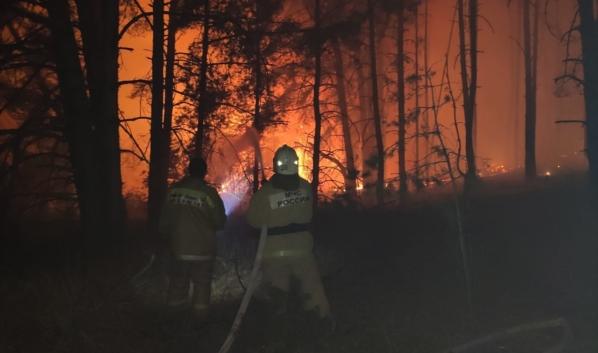 Пожар в Лискинском районе.