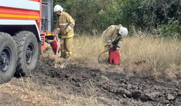 Пожар в Лискинском районе потушили.