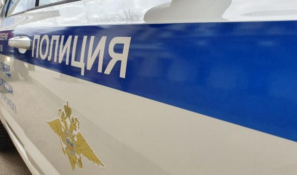 Полицейские задержали «закладчицу».