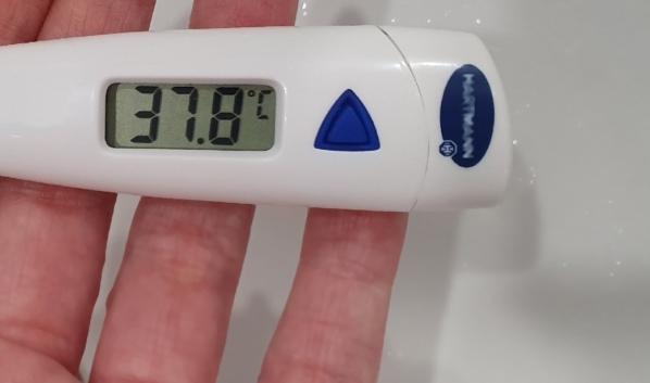 У школьников оказалась повышенная температура.
