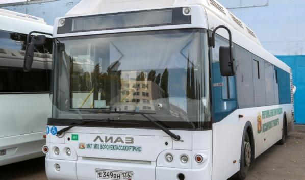 Такие автобусы получит Воронеж.