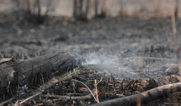 Пожар удалось локализовать.