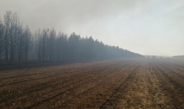Пожар в Бобровском районе локализовали.