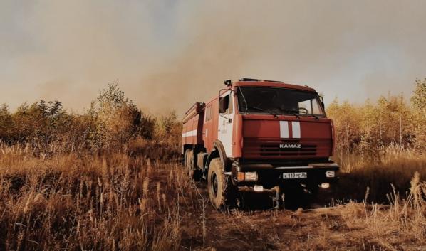 Случился еще один лесной пожар в Воронежской области.