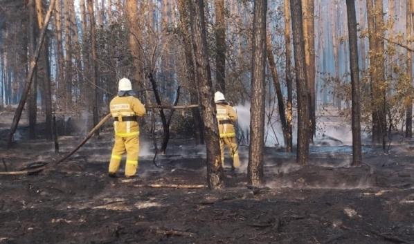 Пожар в Бобровском районе.
