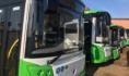Новые автобусы прибудут в Воронеж.