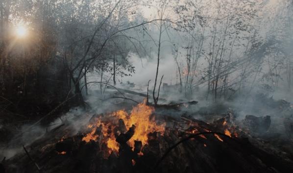 Борьба с пожарами продолжается.