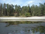 Озеро Чистое пересохло.