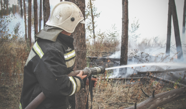 Спасатели продолжают бороться с огнем.