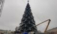 В Воронеже выбирают подрядчика для установки ёлки.