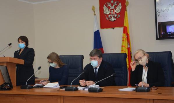 Заседание комиссии в Воронежской городской Думе.