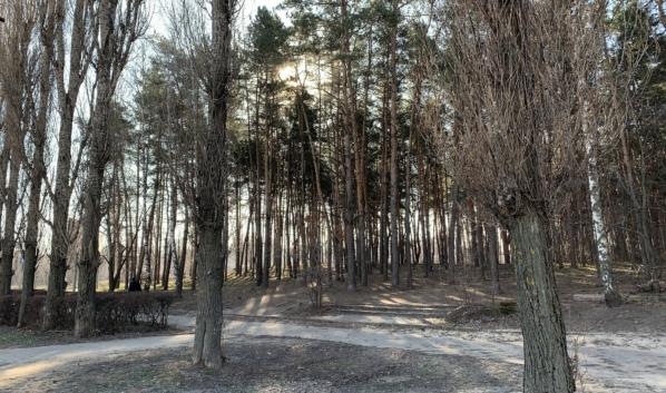 Погода в Воронеже в апреле.