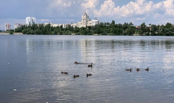 В Воронеже будет стоять теплая погода.