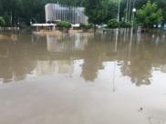 Затопленный Центральный парк.