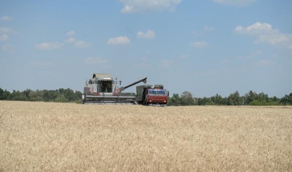 Уборка урожая в Воронежской области.