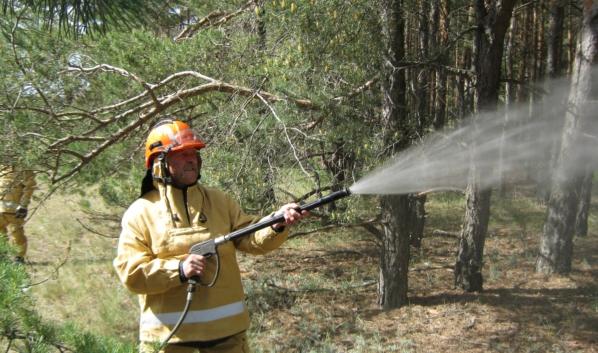 Огонь не перешел на лес.