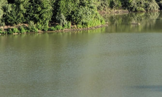 Воронежец утонул в озере.