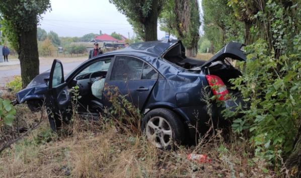 Автомобилистка врезалась в дерево.