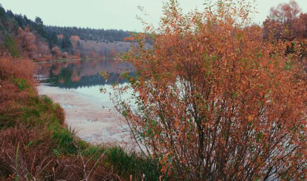 Осень.