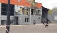 ТЦ в Павловске после взрыва.