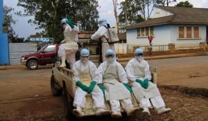 Впервые о вирусе Эбола узнали в 1976 году.